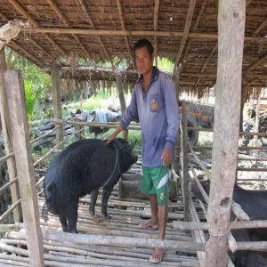 Livestock raising programme